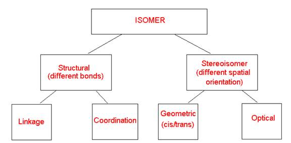 Isomers Worksheet - Answer